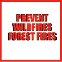 Wildfire camping in national forests