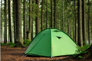 dispersed camping in national forest